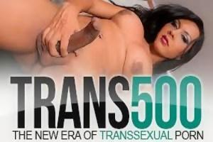 trans500.com